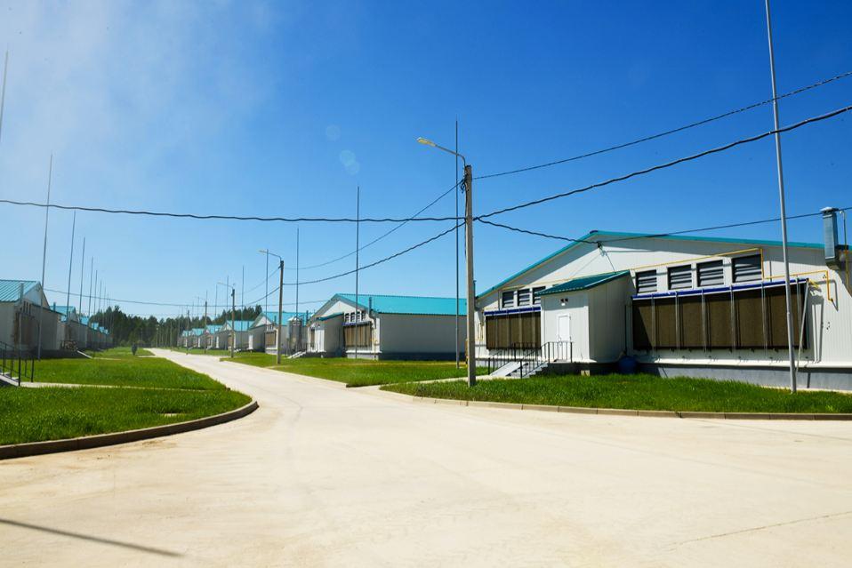 Островский: Смоленщина обеспечивает более половины общероссийского объема производства мяса кролика
