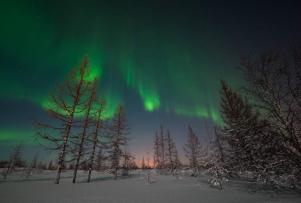 На Ямале появится координационный совет по вопросам изменения климата