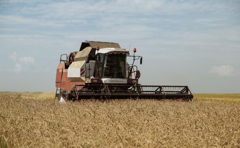 Амурское Правительство ежегодно выделяет 100 млн руб для закупки аграриями элитных семян - Орлов